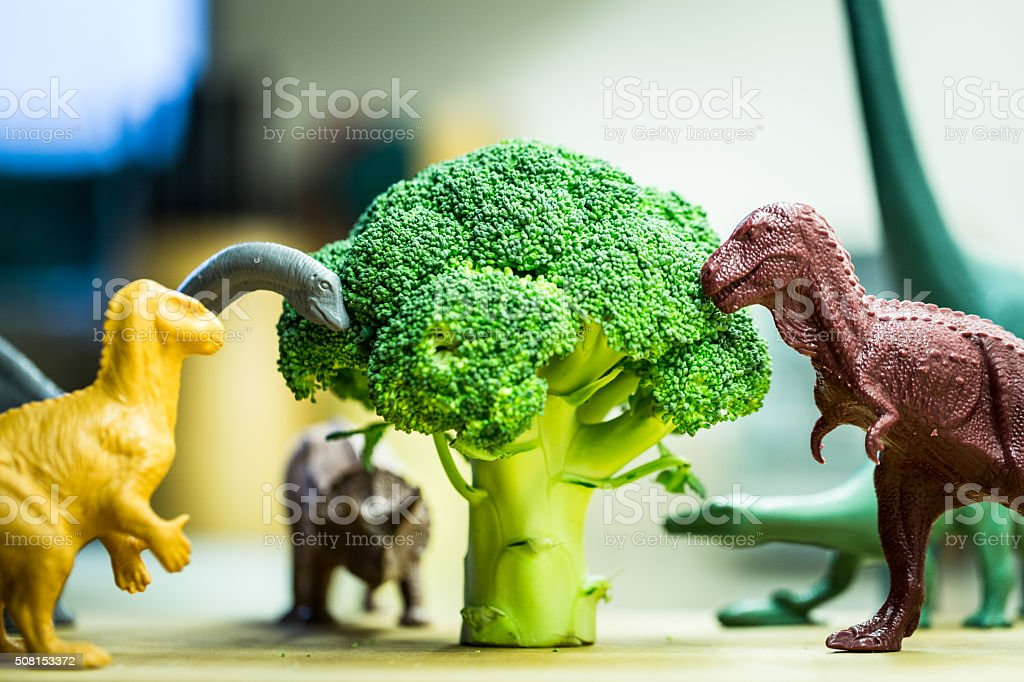 Selection of toy dinosaurs eating broccoli stock photo
