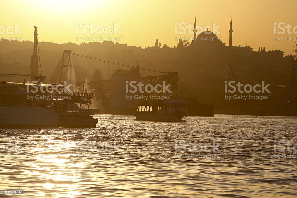 Selim I Mosque in Istanbul, Turkey royalty-free stock photo