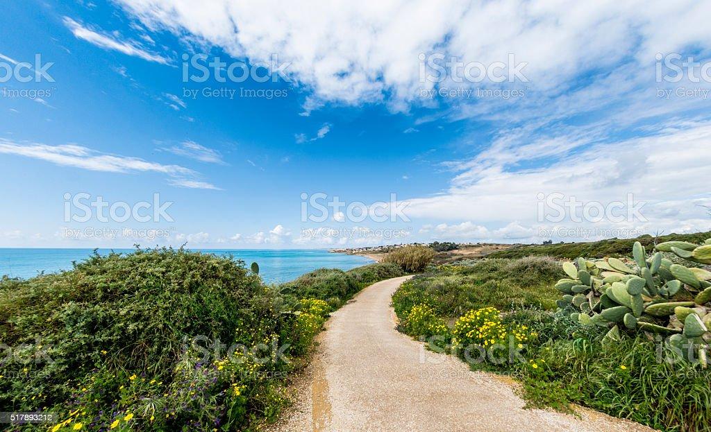 Selinunte Coast stock photo