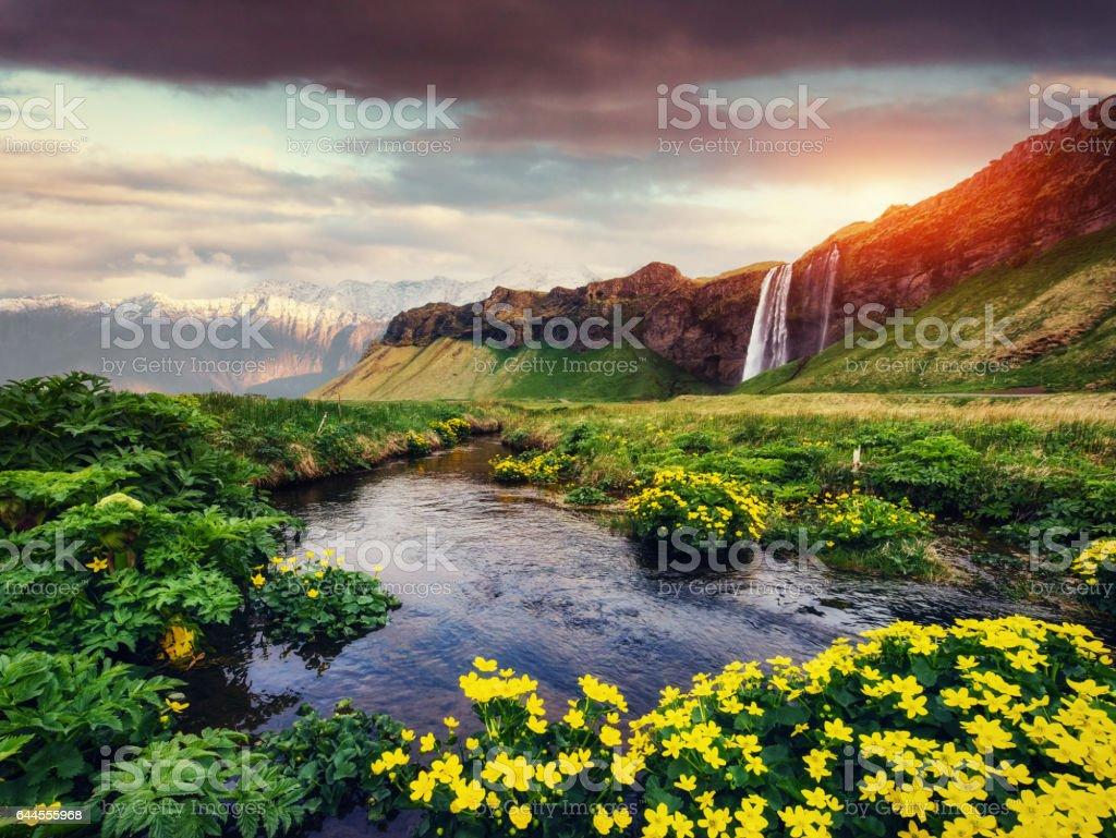 Seljalandfoss waterfall. Beautiful summer sunny day. Iceland stock photo