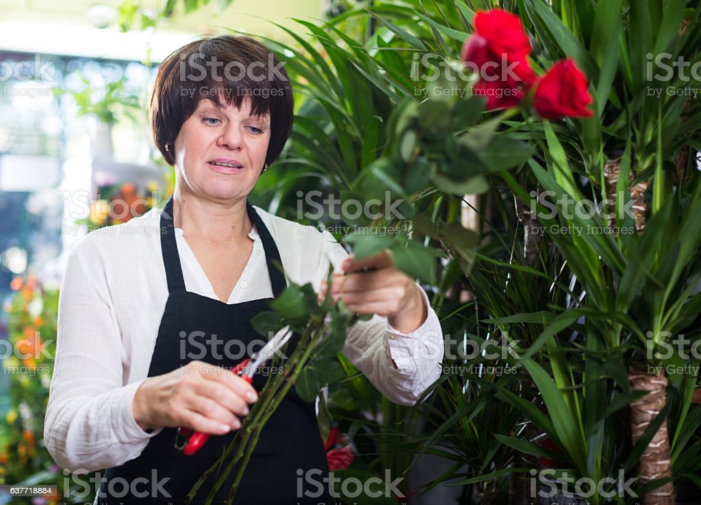 Seller showing roses stock photo