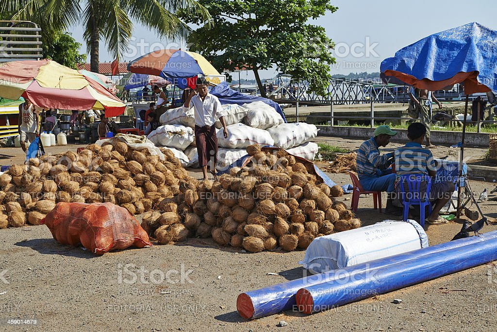 Selling Coconuts royalty-free stock photo