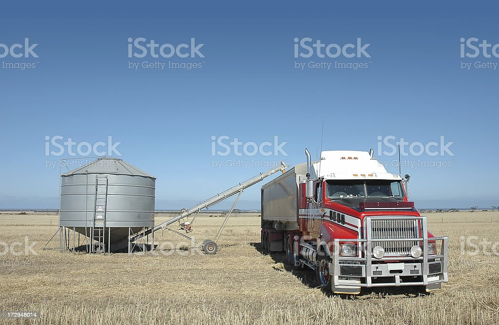 Semi carting grain stock photo