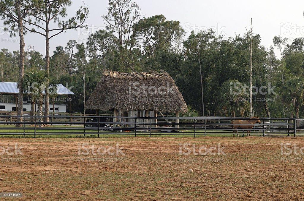Seminole farm (chickee) stock photo