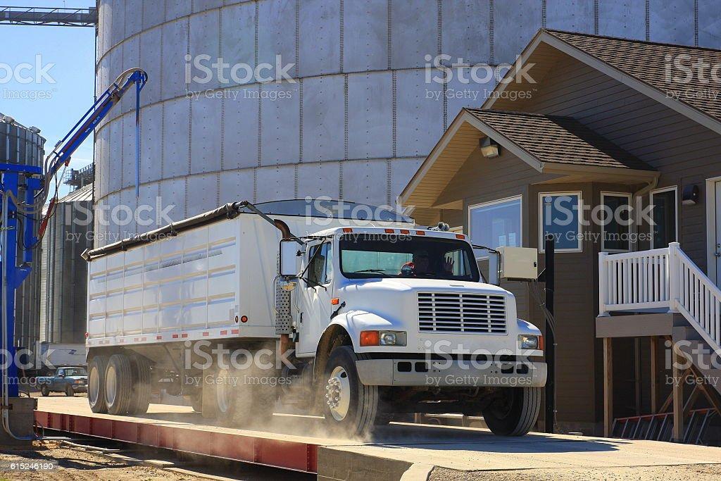Semi-Truck Delivers Grain to Iowa Elevator stock photo