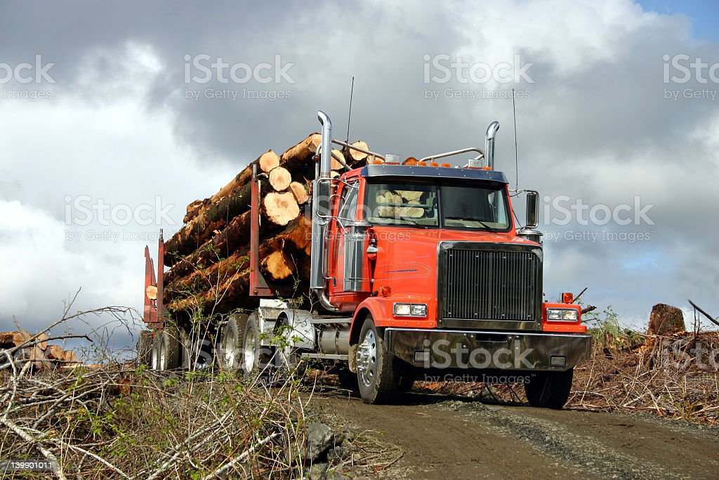 A semi-truck with a red cab is full of logs on a dirt road stock photo