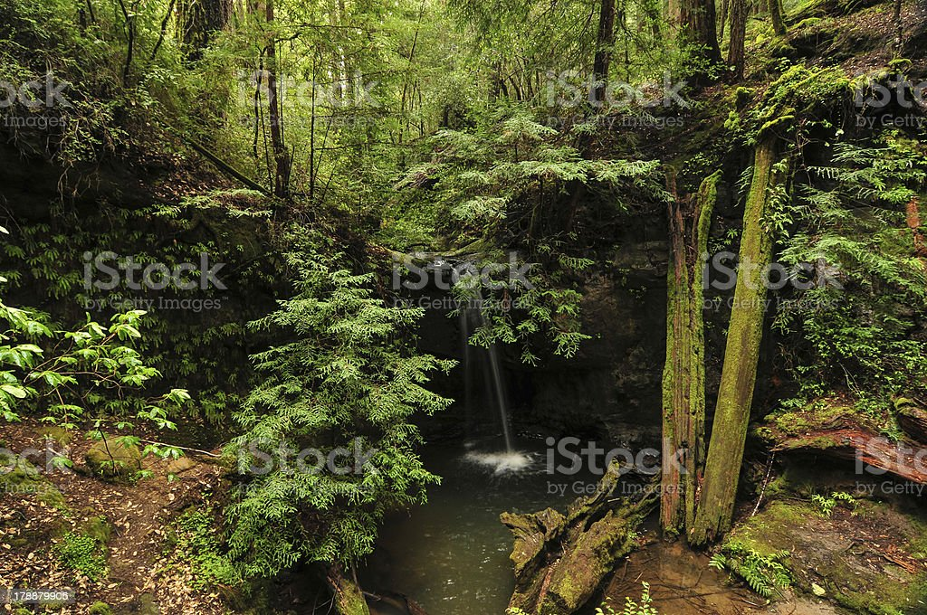 Sempervirens Falls royalty-free stock photo