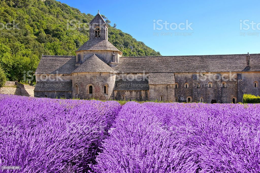 Senanque Abbey behind fields of lavender, Provence, France stock photo