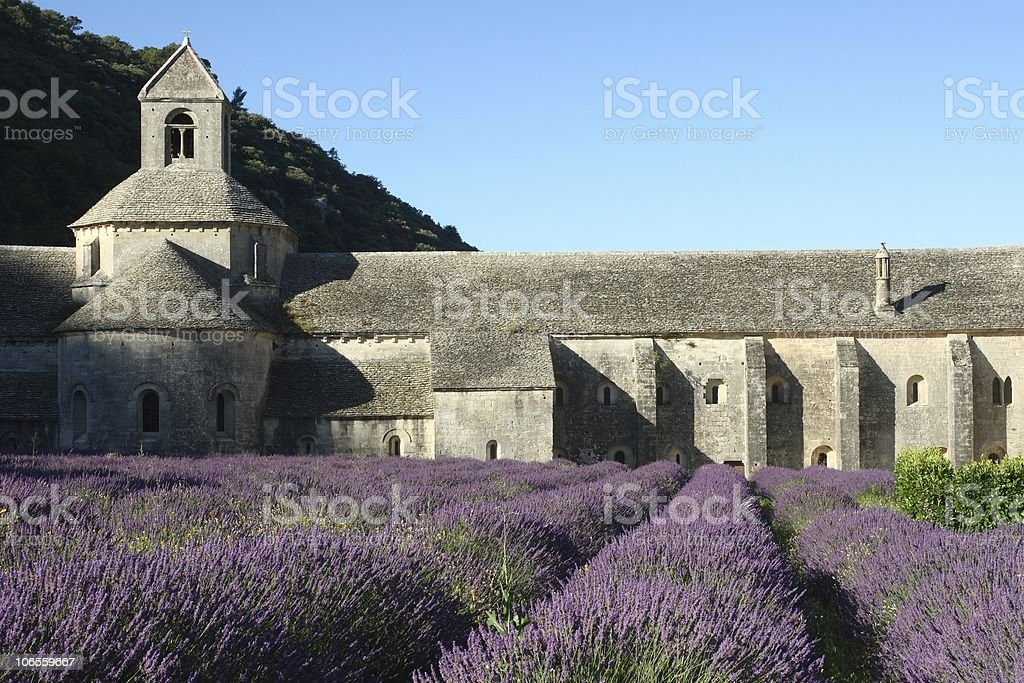 Senanque Abbey in the Morning with Lavender stock photo