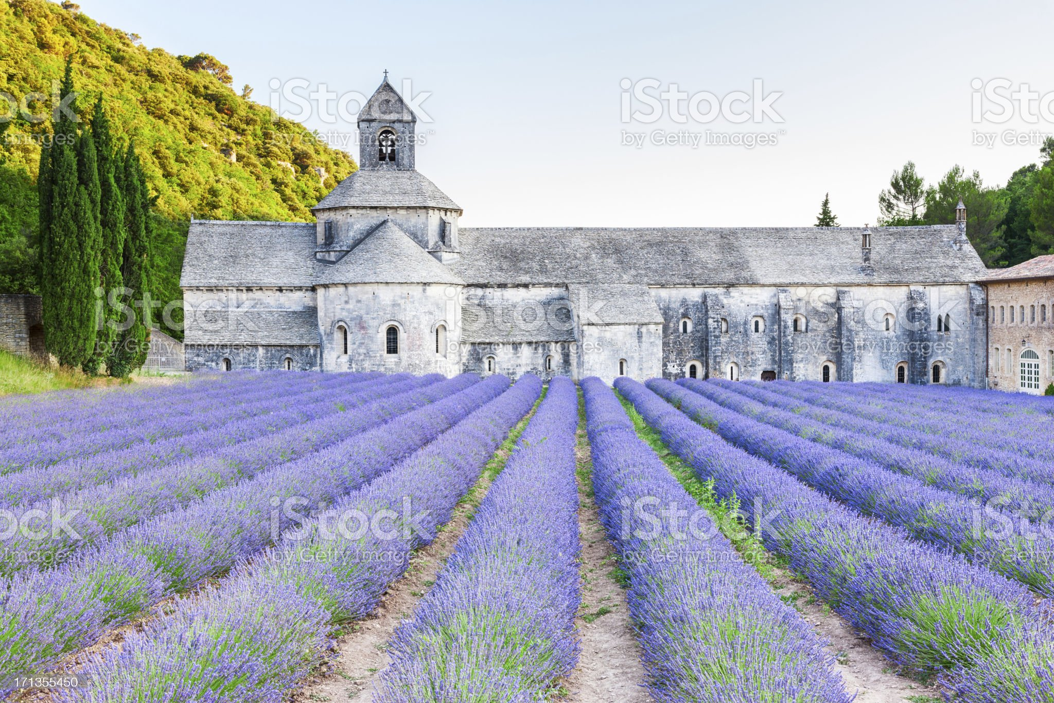 Abbaye Notre-Dame de Senanque in Provence royalty-free stock photo