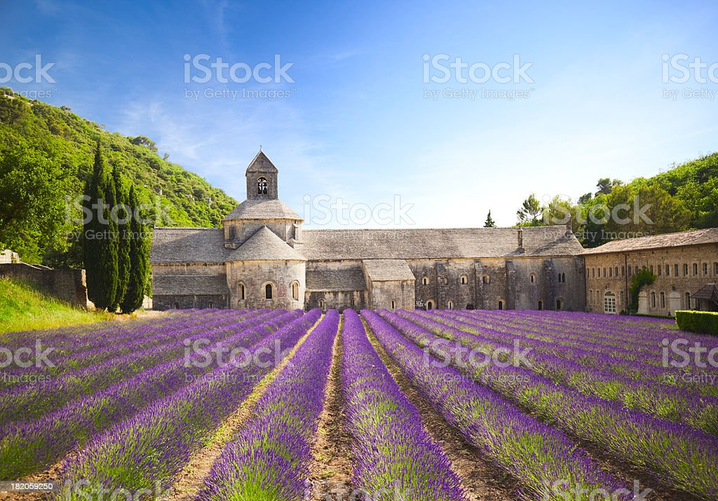 Senanque Abbey (Provence, France) stock photo