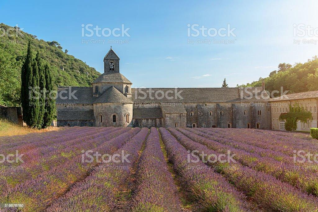 Senanque Abbey Purple Lavender Field Provence France stock photo