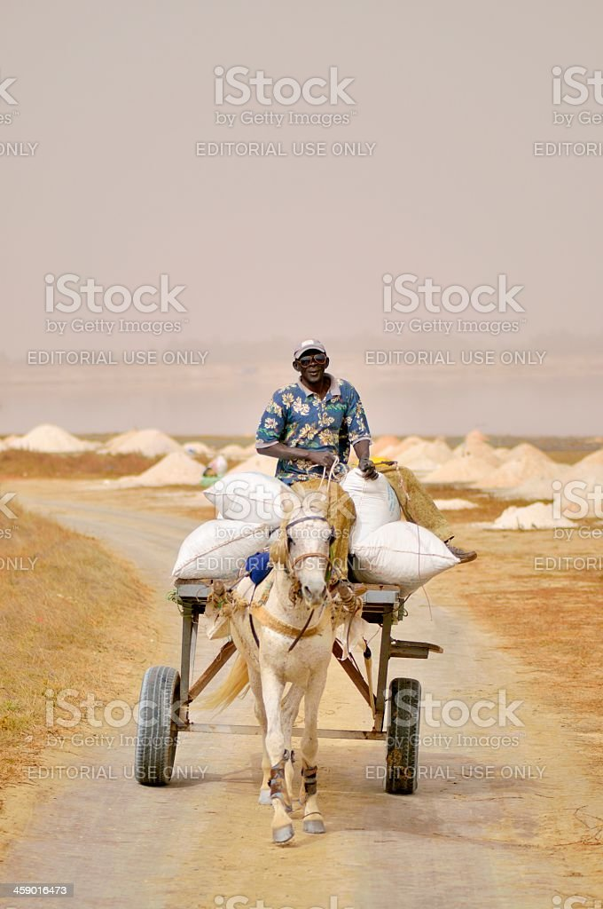 Senegalese Man Driving Horse And Buggy stock photo