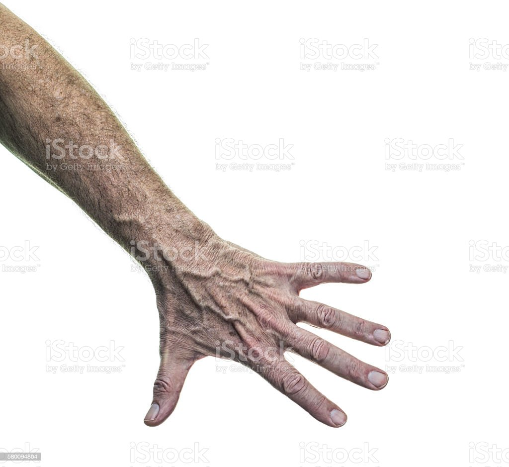 Senior Adult Man Weathered Skin Forearm and Back of Hand stock photo