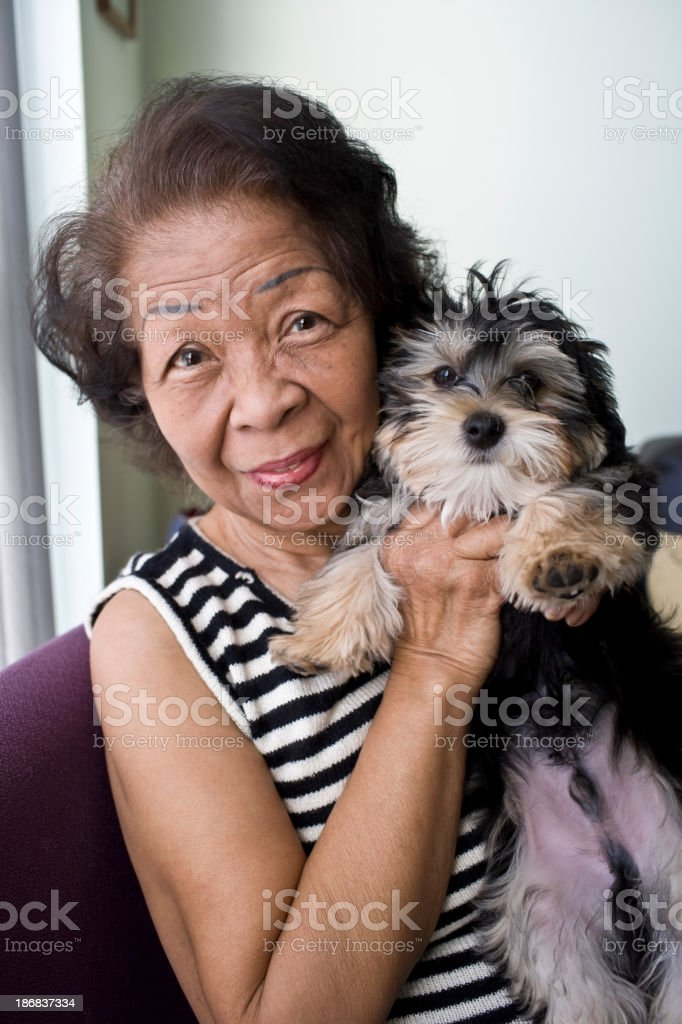 Senior and Puppy royalty-free stock photo