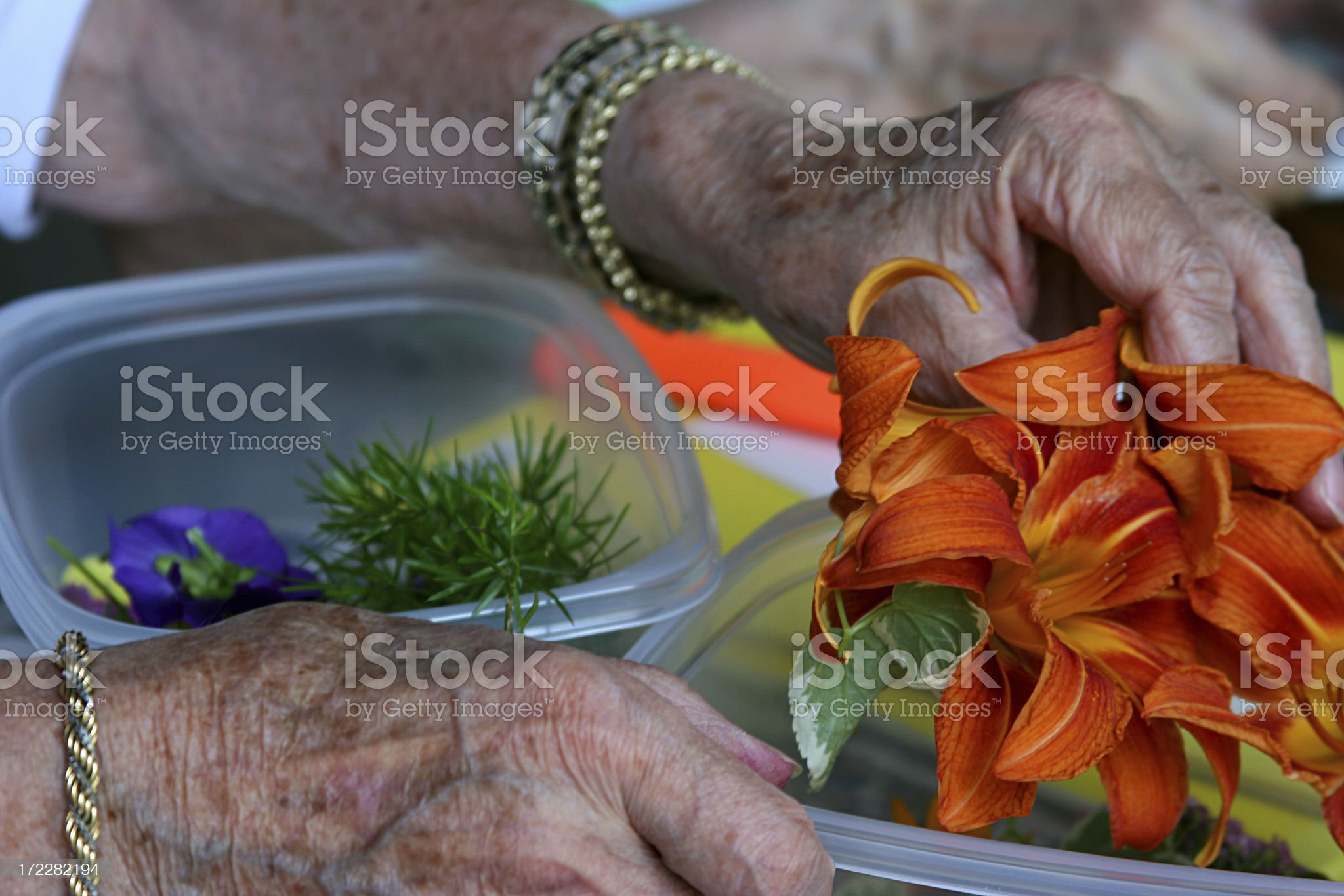 Senior Arts and Crafts royalty-free stock photo