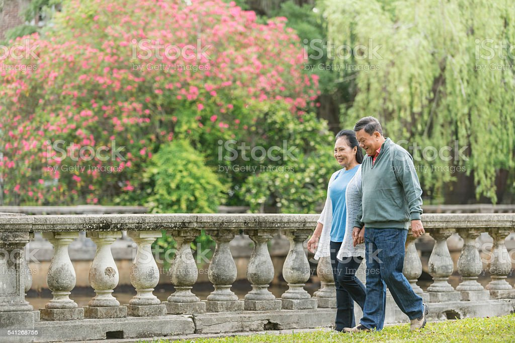 Senior Asian couple walking in the park holding hands stock photo