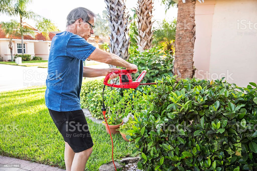 Senior caucasian man trims the hedges outside his home stock photo