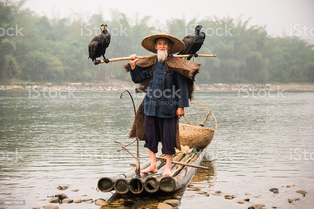 Senior Chinese Fisherman Returns Home with Cormorants Li River China stock photo