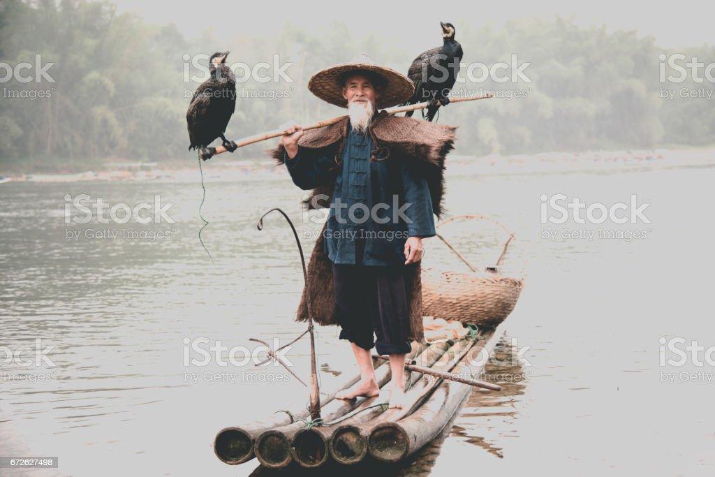 Senior Chinese Fisherman Returns Home with Cormorants Li River China stock photo