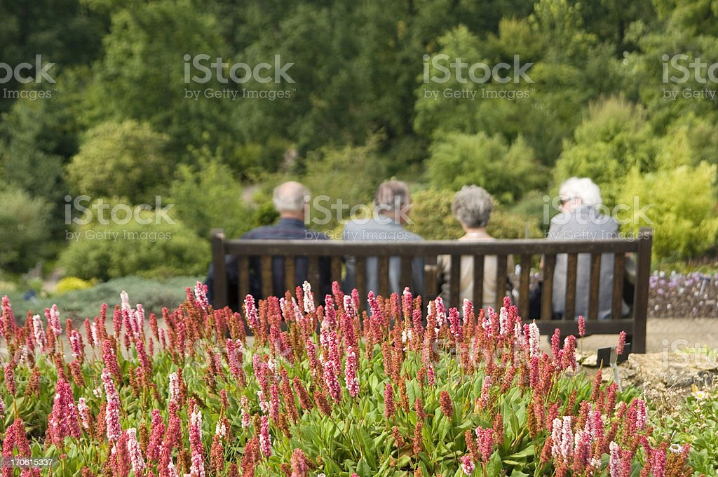 Senior citizens on park bench royalty-free stock photo
