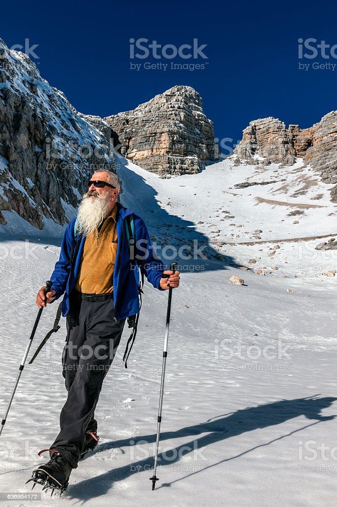 Senior Climber with Long Beard, Kanin, Julian Alps, Slovenia, Europe. stock photo