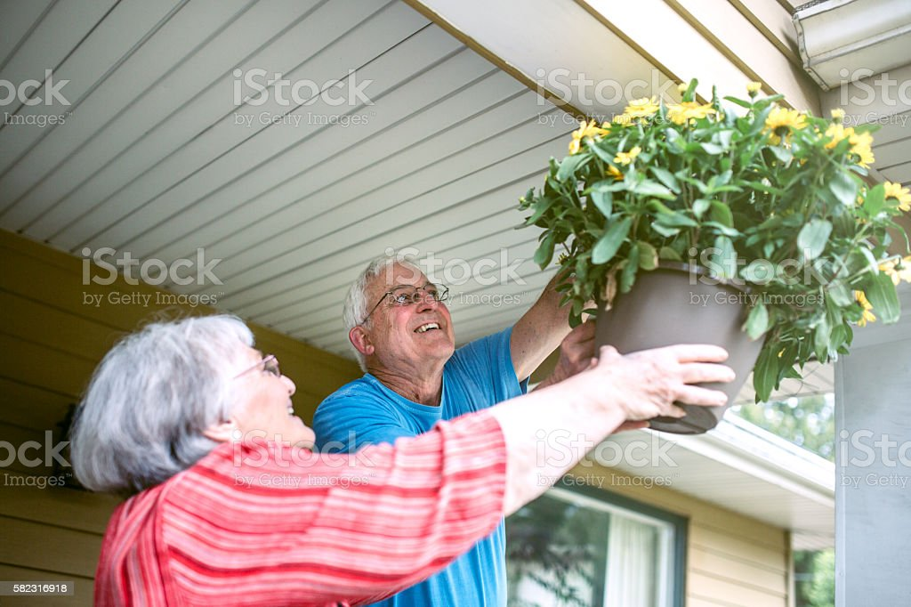 Senior Couple Hanging Flowers at Home stock photo