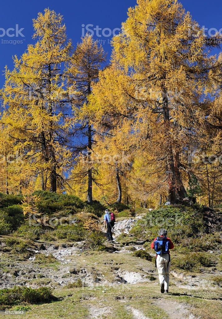 Senior Couple Hiking on this beautiful Autumn Day, Austrian Alps royalty-free stock photo