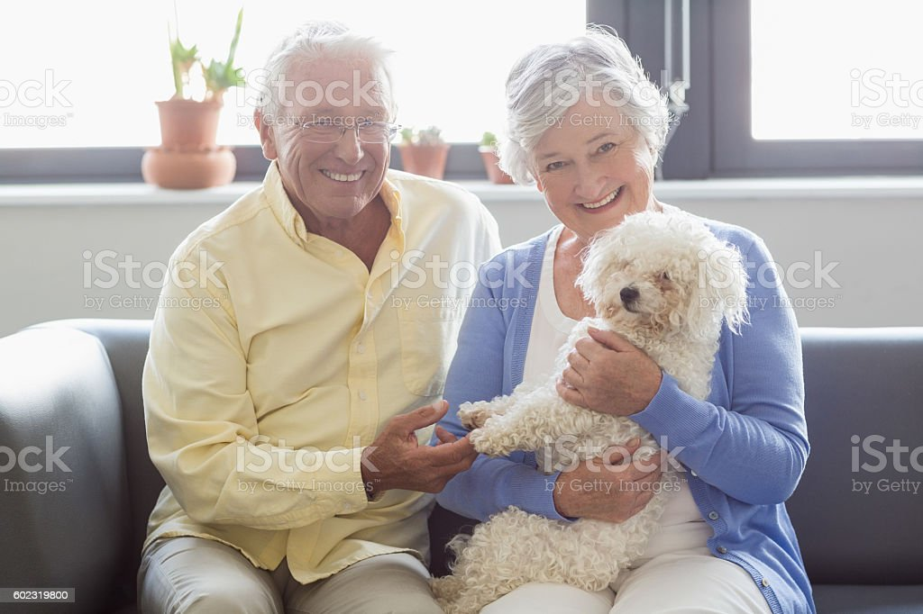 Senior couple holding a dog stock photo