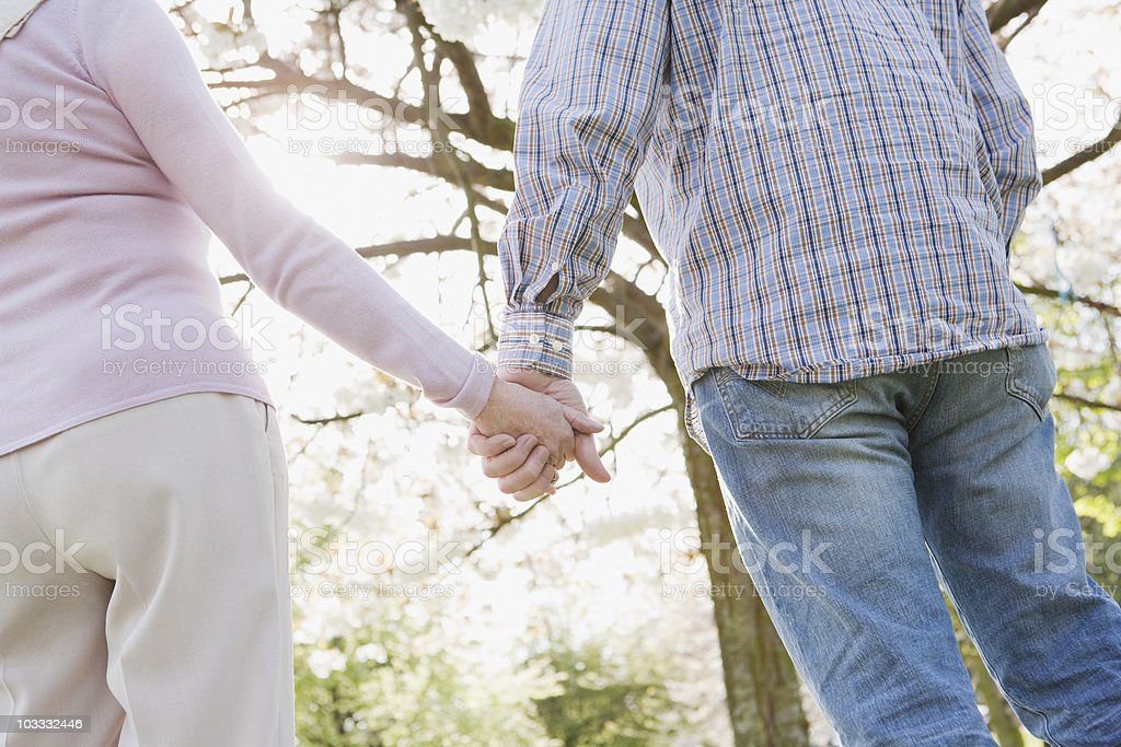 Senior couple holding hands under tree stock photo