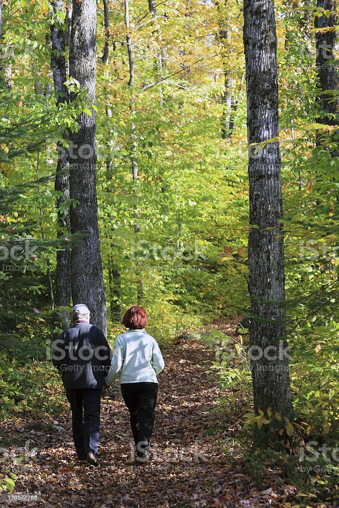 Senior Couple Holding Hands Walking in Automn Forest royalty-free stock photo