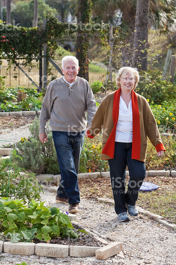 Senior couple holding hands, walking through garden stock photo