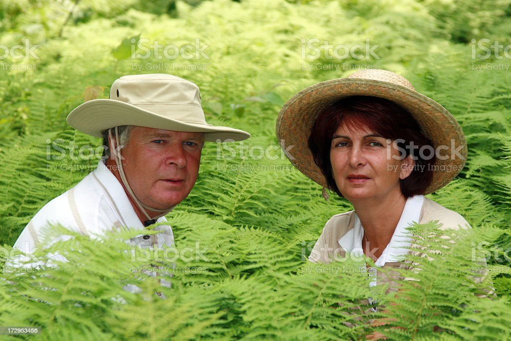 Senior couple in a fern field royalty-free stock photo