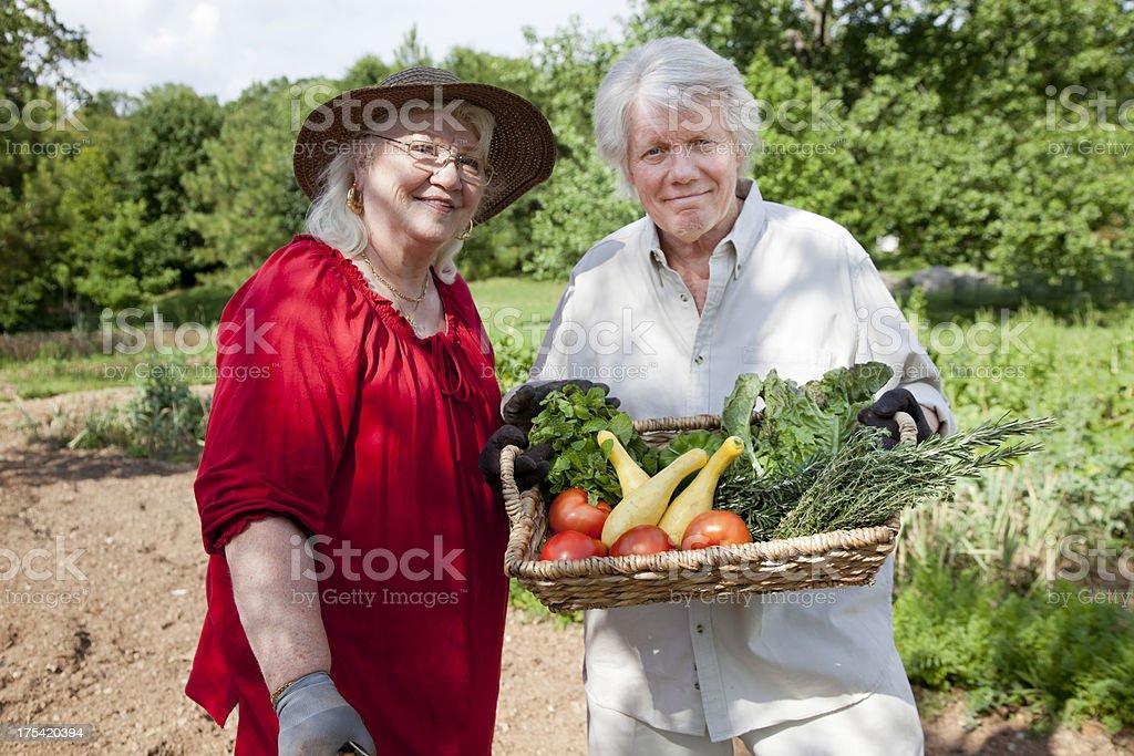 Senior Couple in a Garden royalty-free stock photo