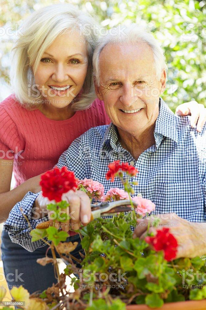 Senior couple in garden royalty-free stock photo