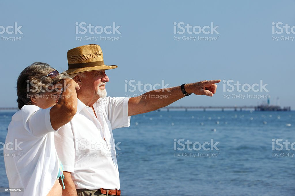 Senior Couple Looking into the Distance royalty-free stock photo