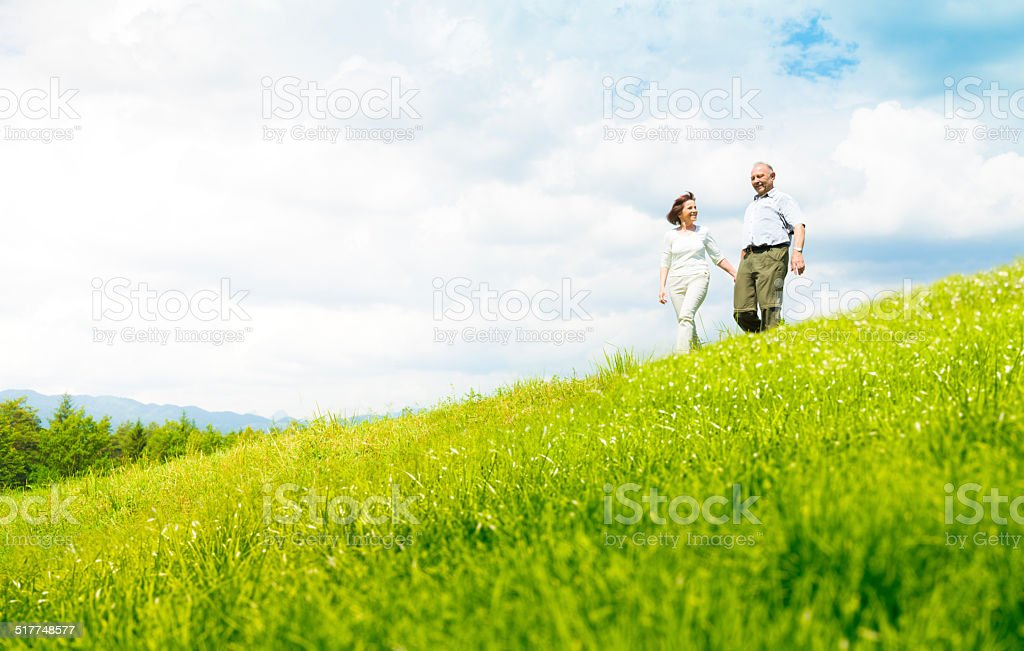 Senior couple on a meadow stock photo