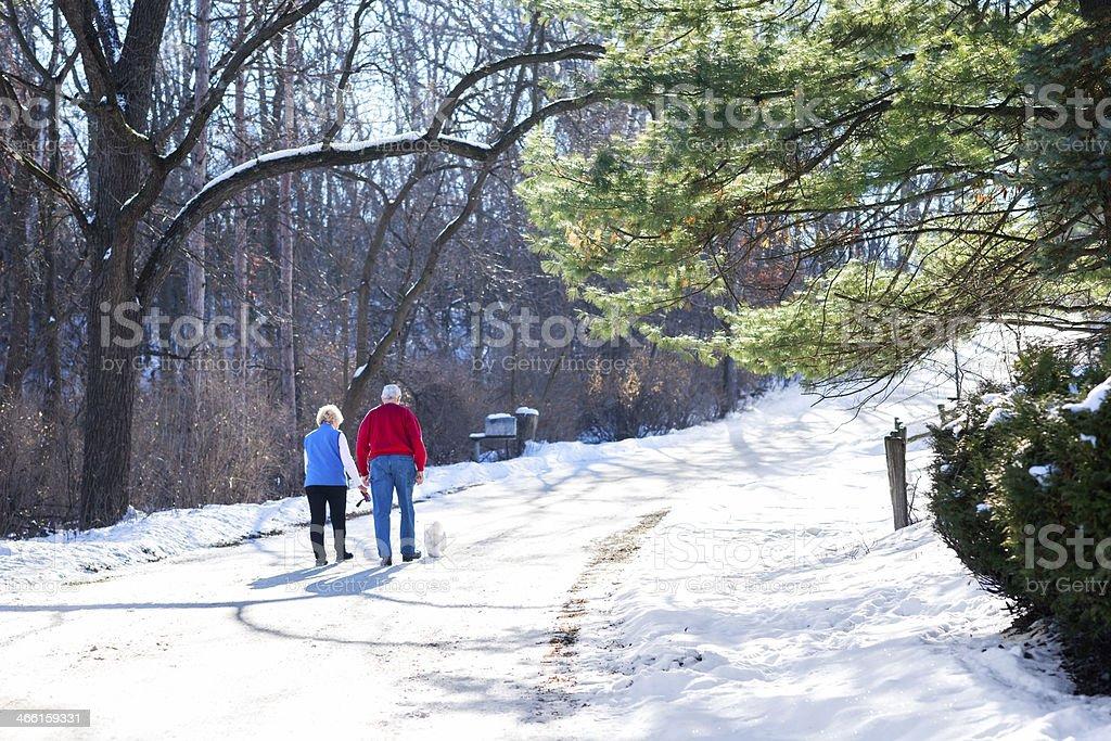 Senior couple walk their dog outdoors in winter stock photo