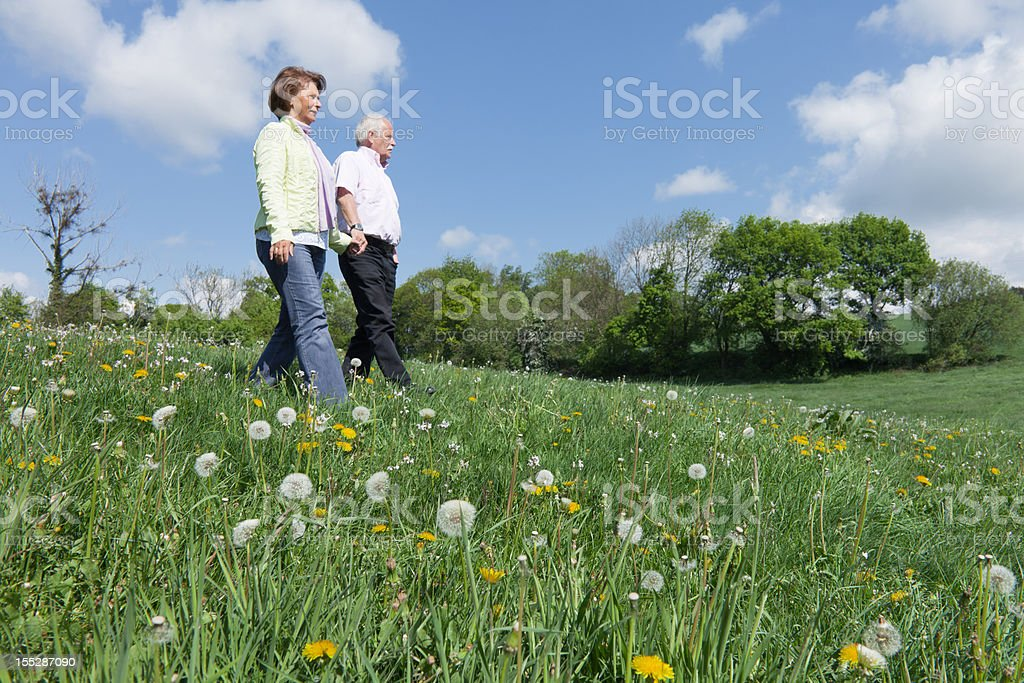Senior couple walking over blooming meadow in spring royalty-free stock photo