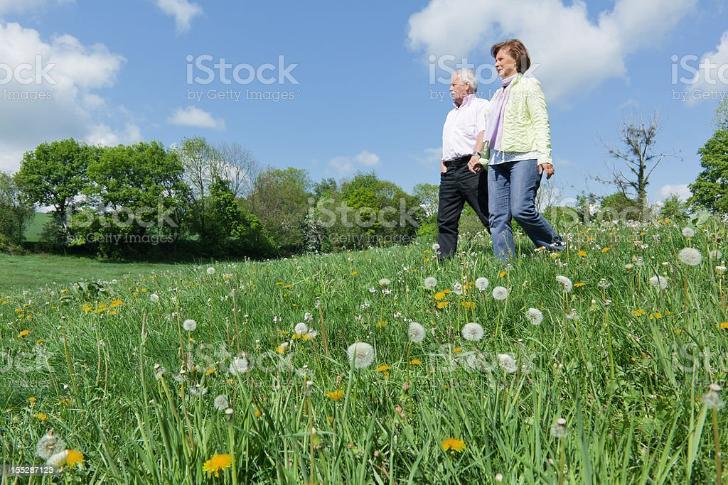 Senior couple walking over blooming meadow in spring (XXXL) royalty-free stock photo