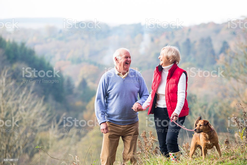 Senior Couple Walking their Dog stock photo
