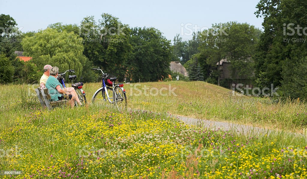 Senior couple with bicycles resting on bench in blooming meadow royalty-free stock photo