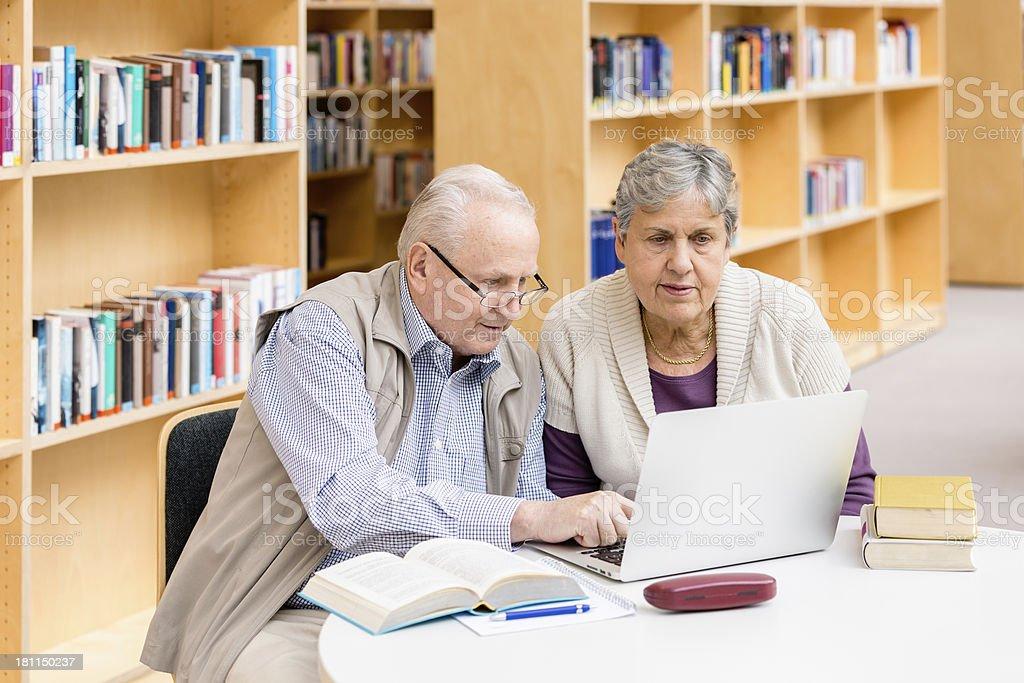 Senior couple with computer royalty-free stock photo
