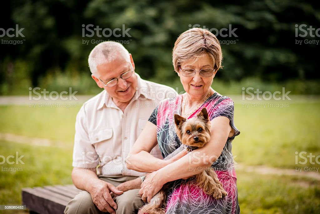 Senior couple with dog stock photo