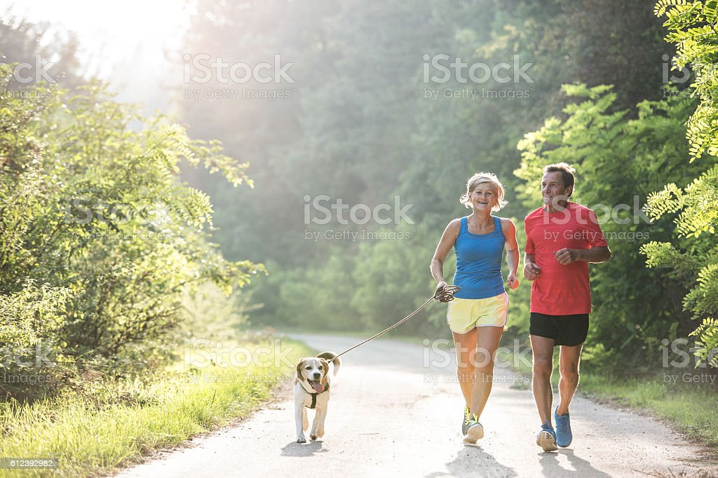 Senior couple with dog running in green sunny nature stock photo