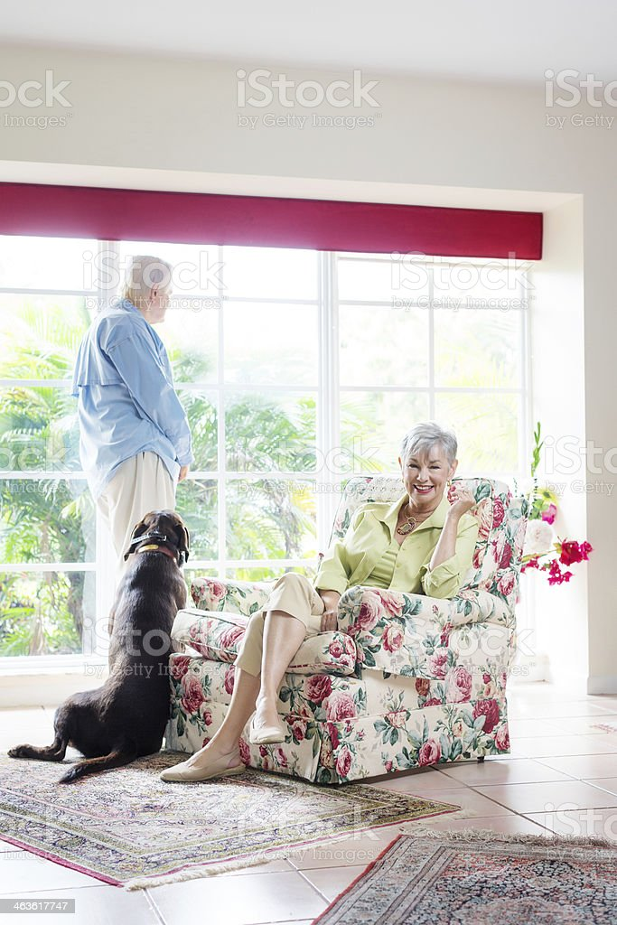 senior couple with their dog stock photo