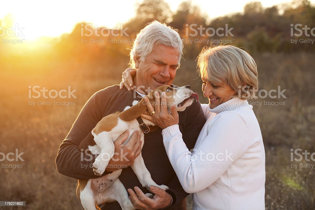 Senior couple with their pet royalty-free stock photo