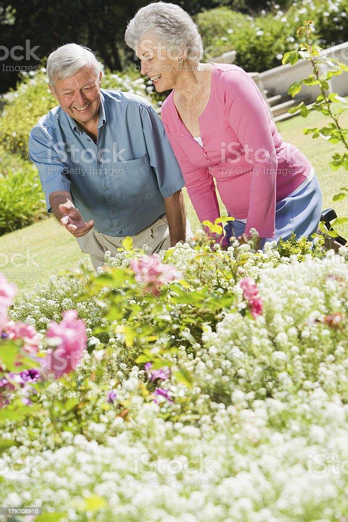 Senior couple working in garden royalty-free stock photo