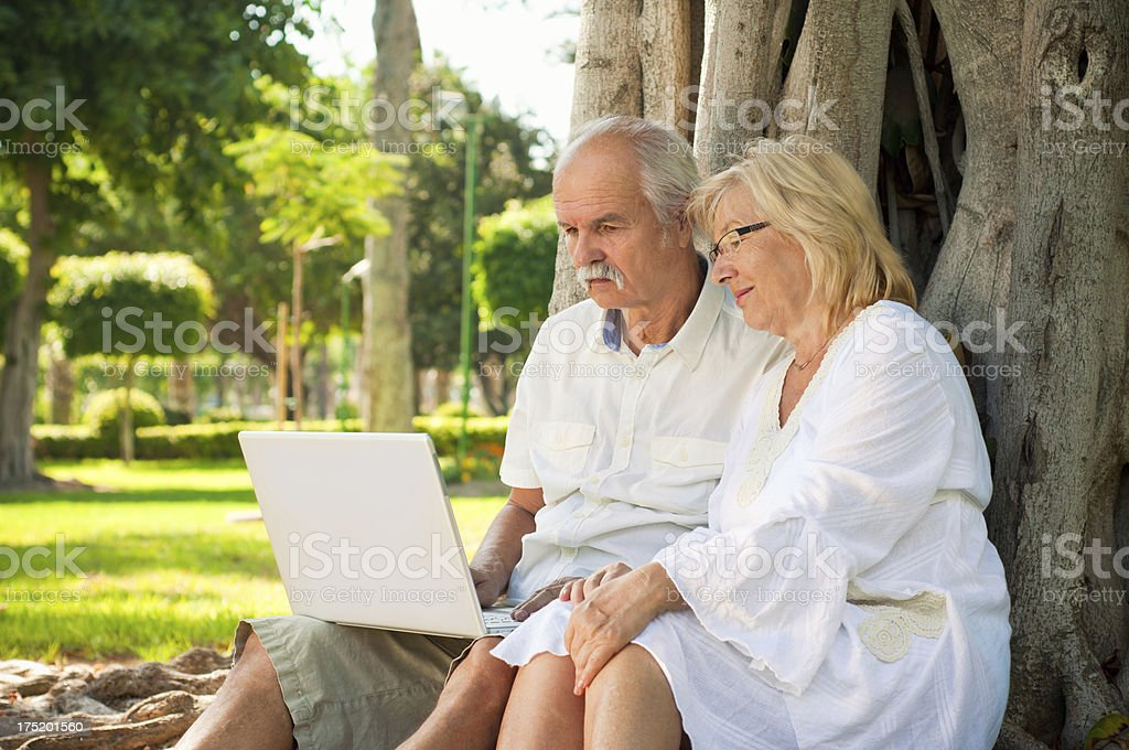 Senior couple working on a laptop in the park stock photo