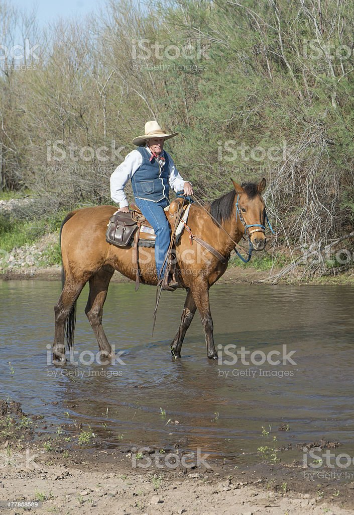Senior cowboy running horse in River royalty-free stock photo